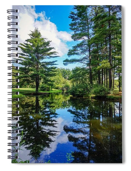 June Day At The Park Spiral Notebook
