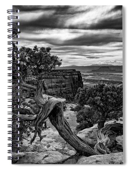 Juniper At Green River Spiral Notebook
