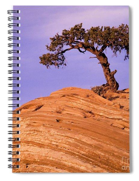 Juniper On Sandstone Spiral Notebook