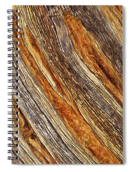 Juniper Texture Spiral Notebook