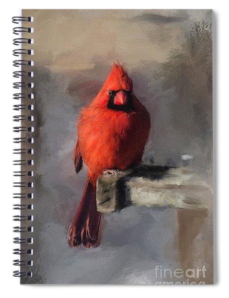 Just An Ordinary Day Spiral Notebook