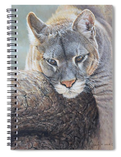 Spiral Notebook featuring the painting Just Chilling by Alan M Hunt