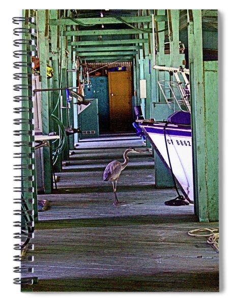 Just Look'n Not Buy'n Spiral Notebook