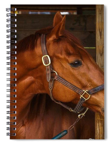 Spiral Notebook featuring the photograph Just Waiting For My Turn To Race by Robert L Jackson