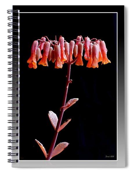 Kalanchoe Spiral Notebook