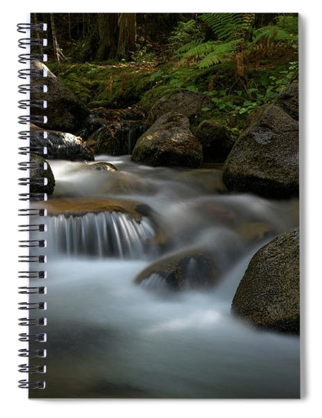 Katahdin Stream In The Shade Spiral Notebook