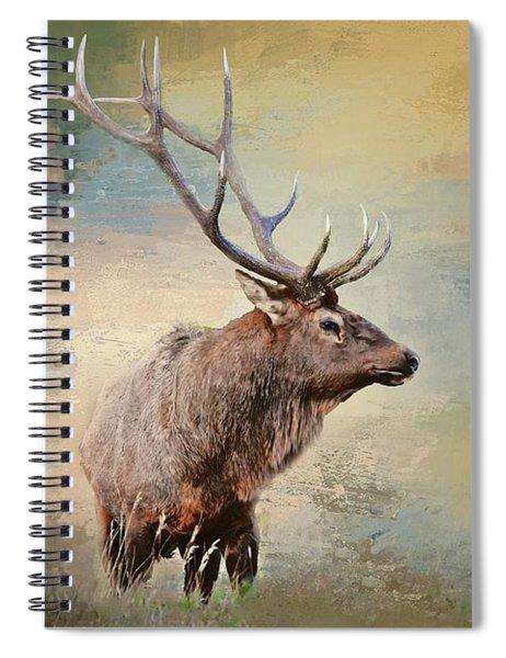 Keeping An Eye On His Harem Spiral Notebook