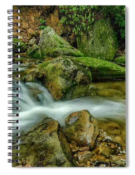 Kens Creek In Cranberry Wilderness Spiral Notebook