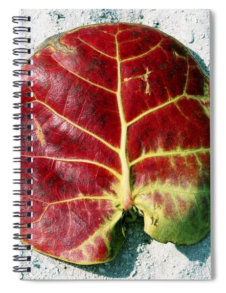 Key West Leaf In The Sand Spiral Notebook
