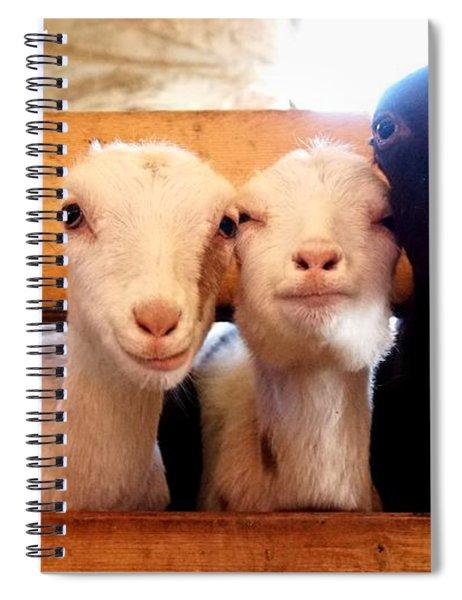 Kids Will Be Kids Spiral Notebook