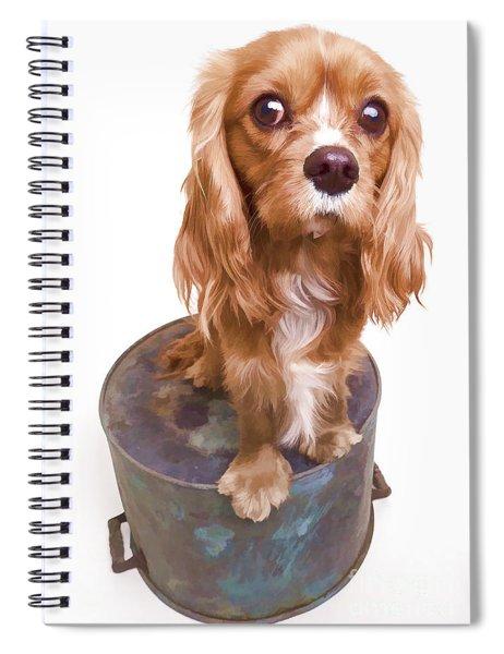 King Charles Spaniel Puppy Spiral Notebook