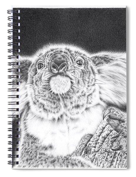 King Koala Spiral Notebook