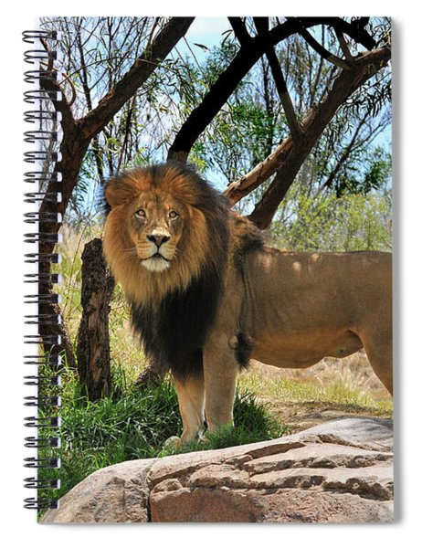 King Of His Domain Spiral Notebook