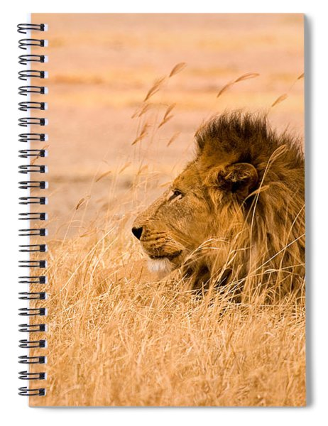 King Of The Pride Spiral Notebook