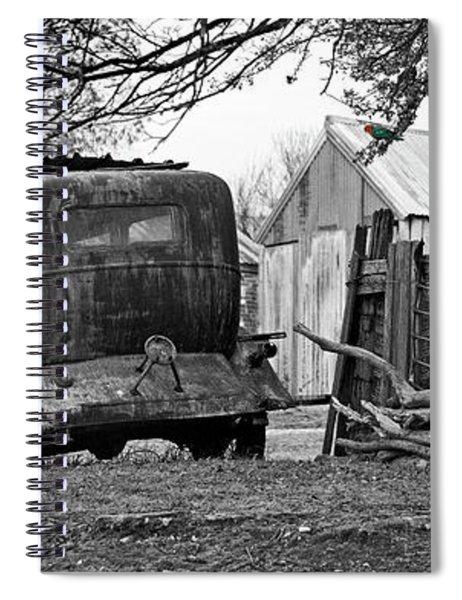 King Parrot Spiral Notebook