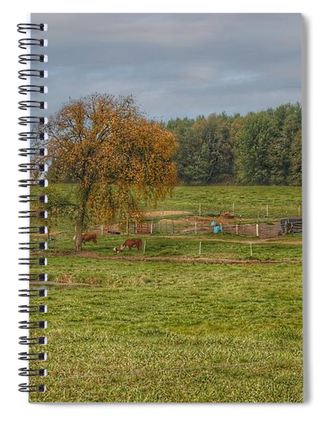 1002 - Kingston Road Cows Spiral Notebook