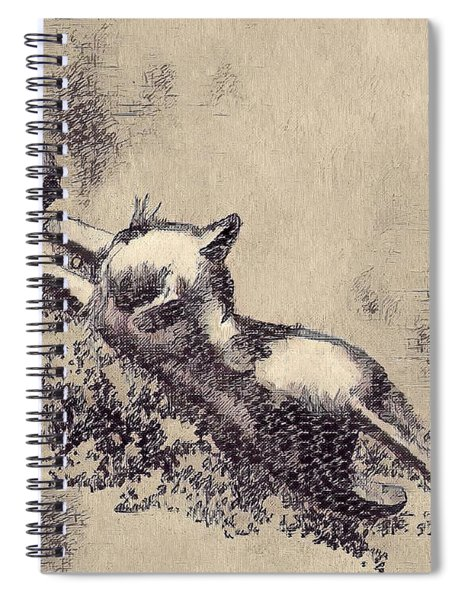 Kitten Playing With Ball Spiral Notebook