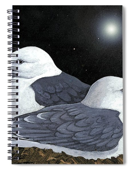 Kittiwakes Nesting Spiral Notebook