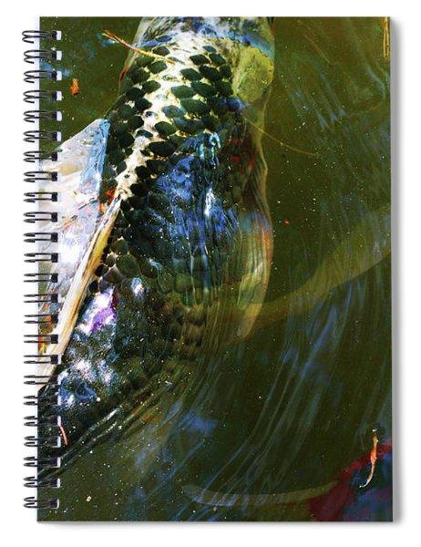 Koi Collage Spiral Notebook