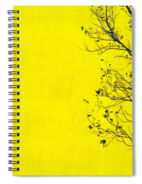 Spiral Notebook featuring the photograph Krishna by Skip Hunt