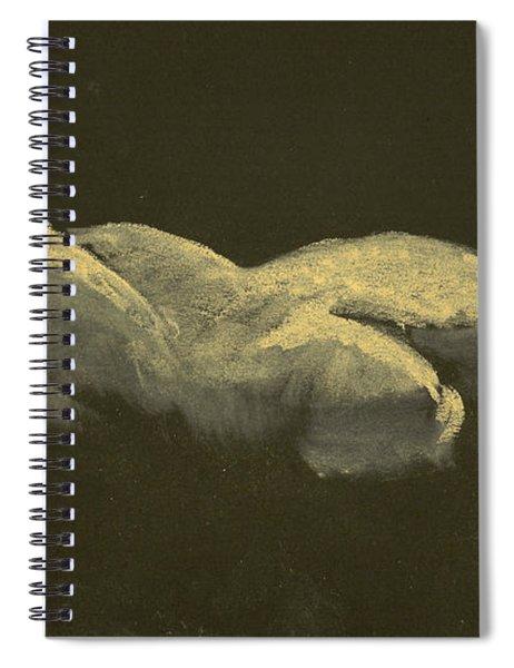 Kroki 2014 09 27_3figure Drawing White Chalk  Spiral Notebook