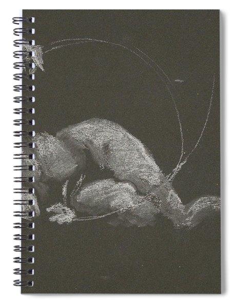 Kroki 2015 10 03_14b Figure Drawing White Chalk Spiral Notebook