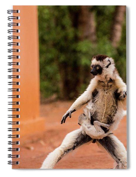 Kung Fu Mom Spiral Notebook
