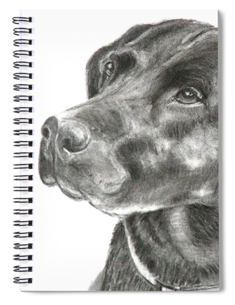 Lab Charcoal Drawing Spiral Notebook