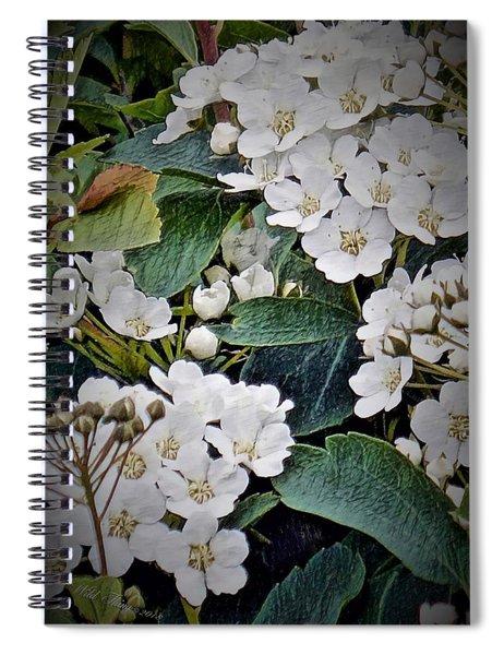 Lacey Patterns Spiral Notebook