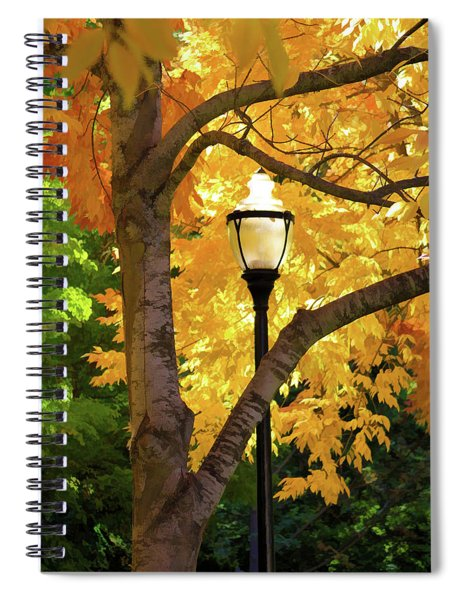 Lamp In Lithia Park Spiral Notebook