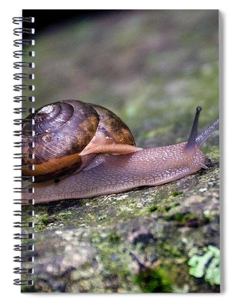 Land Snail Spiral Notebook