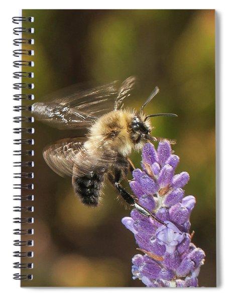 Landing On Lavender Spiral Notebook