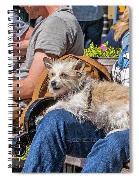 Lap Dog Spiral Notebook