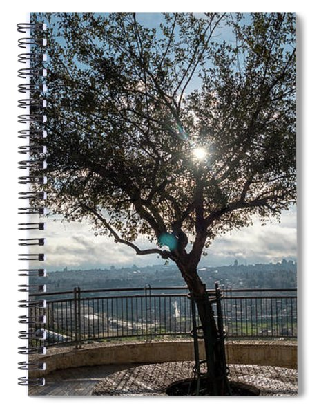 Large Tree Overlooking The City Of Jerusalem Spiral Notebook