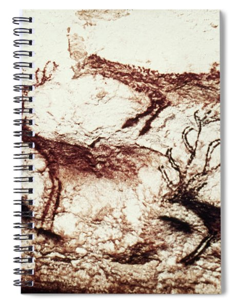 Lascaux: Stags Spiral Notebook