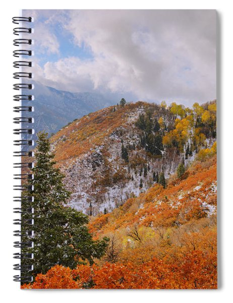 Last Fall Spiral Notebook