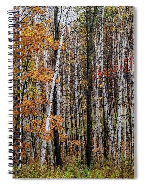 Last Stand Spiral Notebook