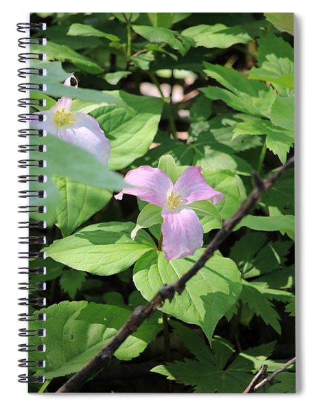 Late Season Trillium Spiral Notebook