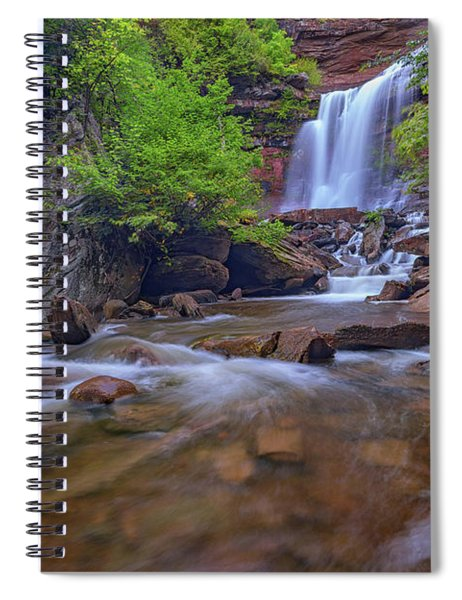 Late Summer At Kaaterskill Falls Spiral Notebook