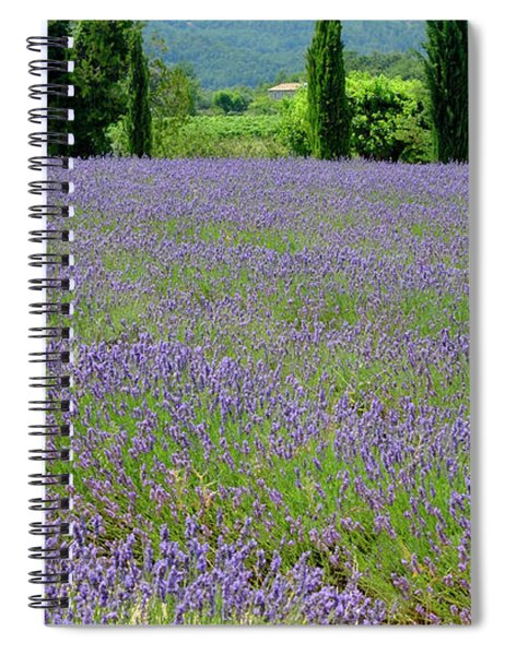 Lavender And Cypress Spiral Notebook