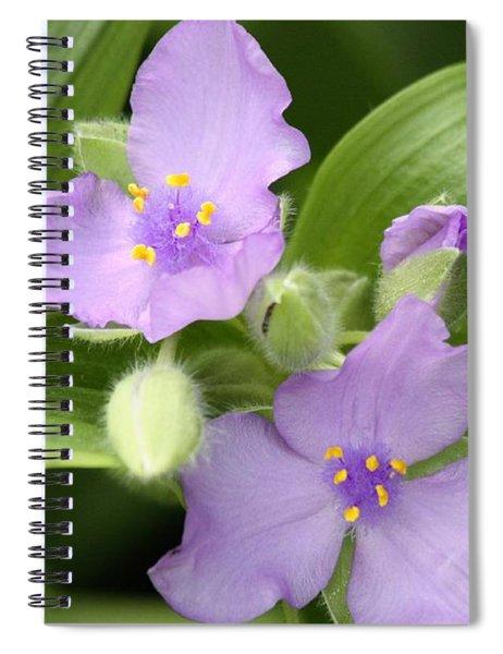 Lavender Blooms In Spring Spiral Notebook