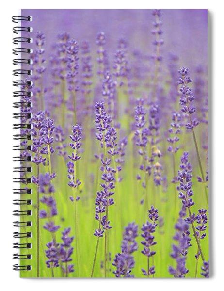 Lavender Fantasy Spiral Notebook