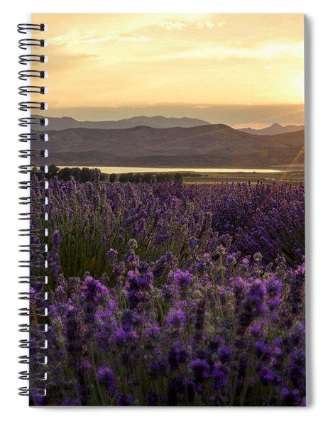 Lavender Glow Spiral Notebook