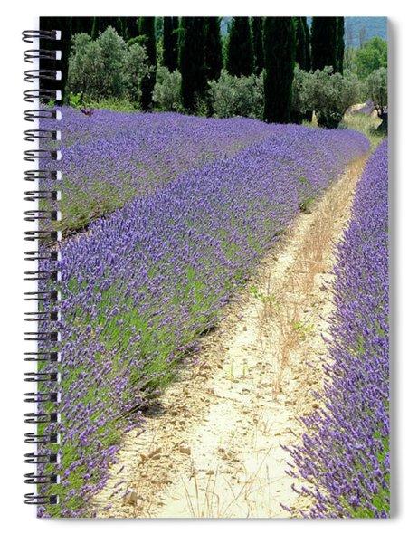 Lavender Heaven Spiral Notebook