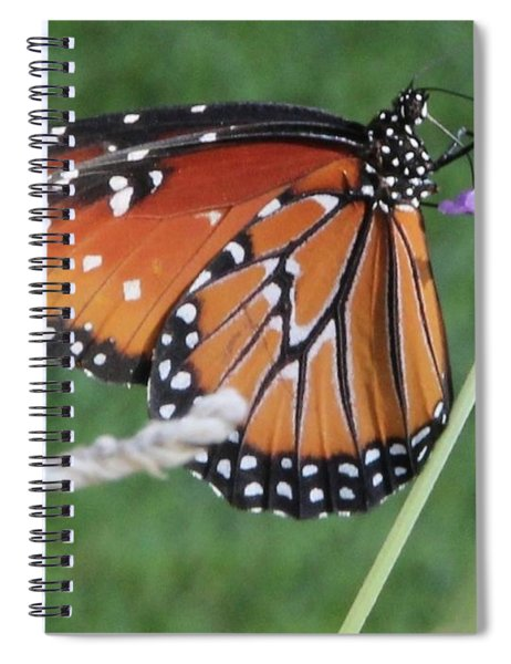 Lavender Lunch Spiral Notebook