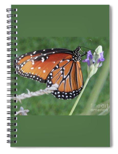 Lavender Lunch Spiral Notebook