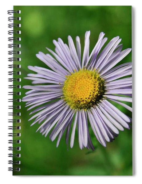 Lavender Serenity Spiral Notebook
