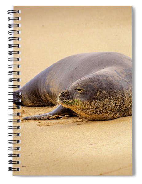 Lazy Gaze From The Shore Spiral Notebook