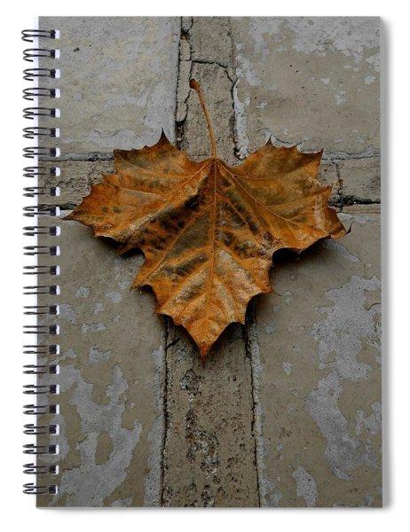 Leaf Cross Spiral Notebook