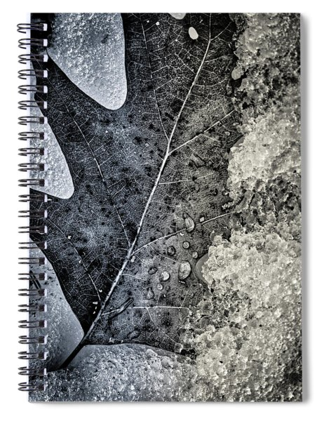 Leaf On Ice Spiral Notebook
